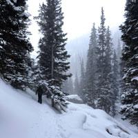 Snowshoeing at 10,000+ feet.