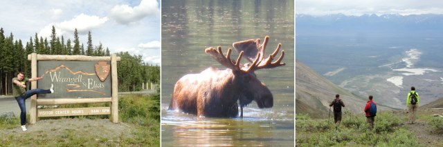Wrangell-St. Elias entrance, Moose sighting in Chitina, Bonanza Mine hike.