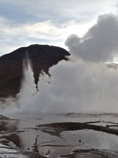On our last day in San Pedro we did an excursion to the El Tatio geyser field, the third largest collection of geysers in the world.