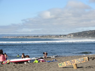 Busy beach at Punta de Lobos.