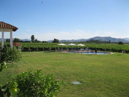 Hotel Terra Viña lawn and pool.
