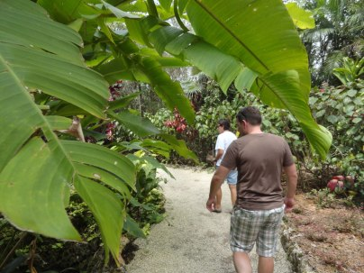 Next we went to the Queen Elizabeth II Botanic Gardens.