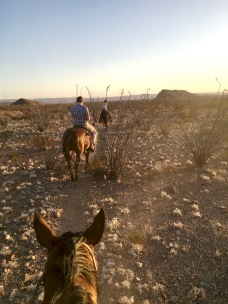 Sunset Ride Big Bend Stables