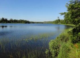 Lake Livermore Isle Royale