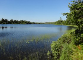 Lake Livermore Isle Royale