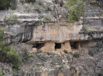Also nearby is Walnut Canyon National Monument, which preserves many cliff dwellings of the Sinagua people. They were inhabited between 1125 and 1250.