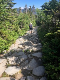 Lower portions of the trail are less steep, but still require careful footing because it's covered in uneven boulders.
