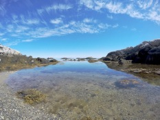 "Kejimkujik National Park's ""Seaside Adjunct"" section has gorgeous rocky beaches where seals relax on rocks."