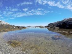 "Kejimkujik National Park's ""Seaside Adjunct"" section has gorgeous rocky beaches where seals relax on rocks."