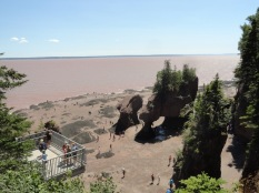 The Bay of Fundy has the largest tides in the world. Hopewell Rocks is a great place to view the phenomenon. This is low tide, at high tide the base of the rocks are under water.