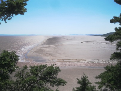 The mud flats to the right are covered and uncovered by water twice a day, leading to rich biodiversity.