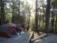 Morning at our Fundy campsite.