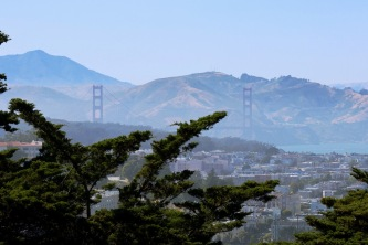 Golden Gate Bridge viewed from Buena Vista Park, the oldest park in the city.