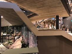 The Utah Museum of Natural History has great exhibits explaining the history of geology and life in the Basin and Range region and the Colorado Plateau.