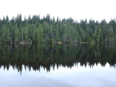 Quiet morning hike around Stump Lake in Alice Lake Provincial Park near Squamish.