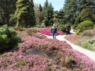 The sun came out just as we got to the Vandusen Botanic Garden.