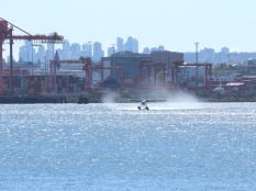 A seaplane taking off from Vancouver Harbour.