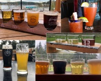 Drinking on the Sunshine Coast. Tapworks, Persephone, Bricker Cider, 101 Brewhouse, A Frame, Backcountry, Howe Sound.