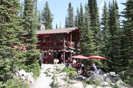 The Plain of Six Glaciers Tea House is a welcome sight after hiking all the way from Lake Louise. They made some great chili with no electricity.