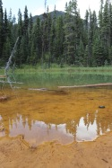 Paint Pots at Kootenay are pools of glacial water in beds of ochre tinted soil.