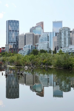 Downtown Calgary reflected in a pool at Prince's Island Park.