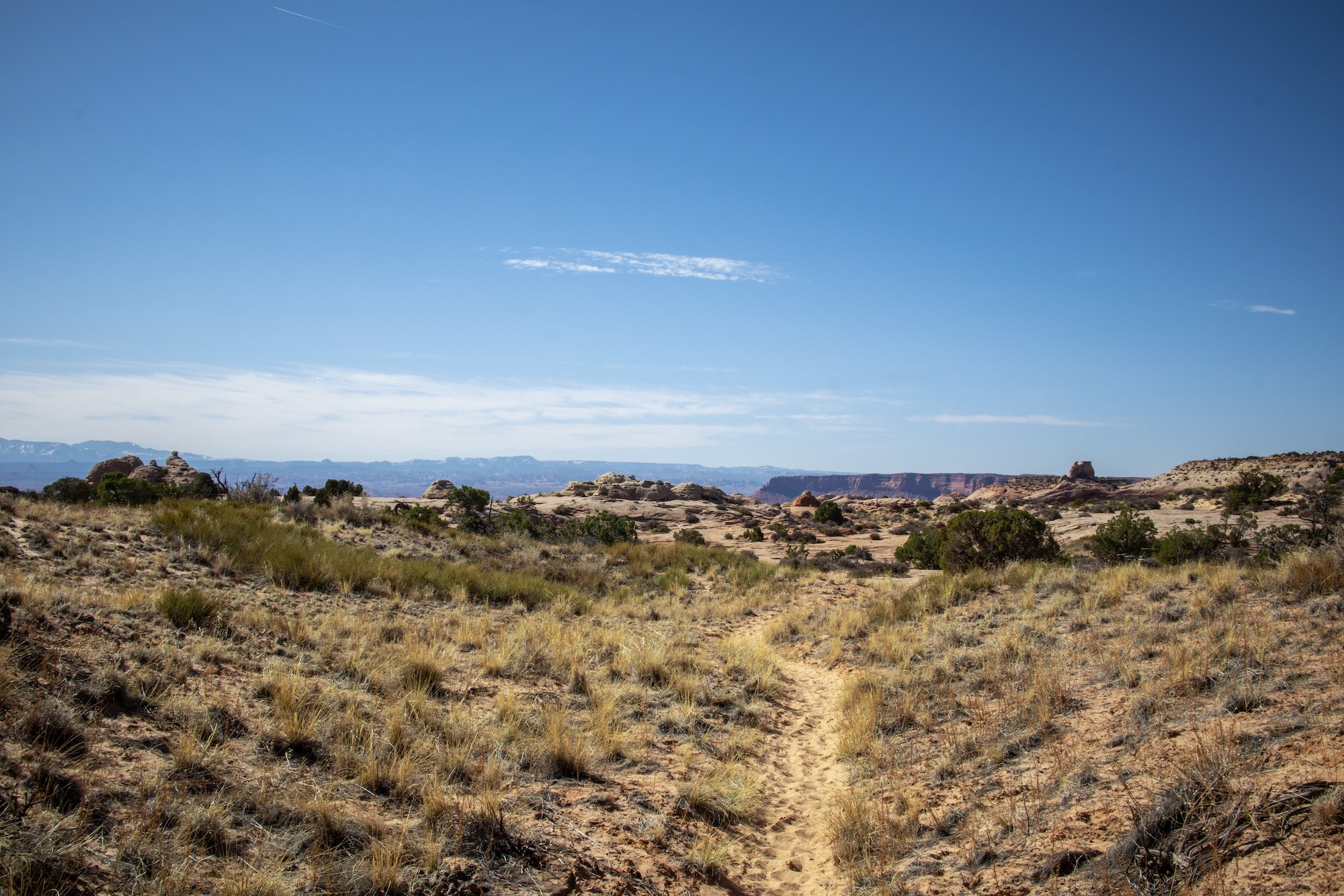 The first 1.5 miles of the Lathrop Trail are flat grasslands, but then you see the edge in the distance...
