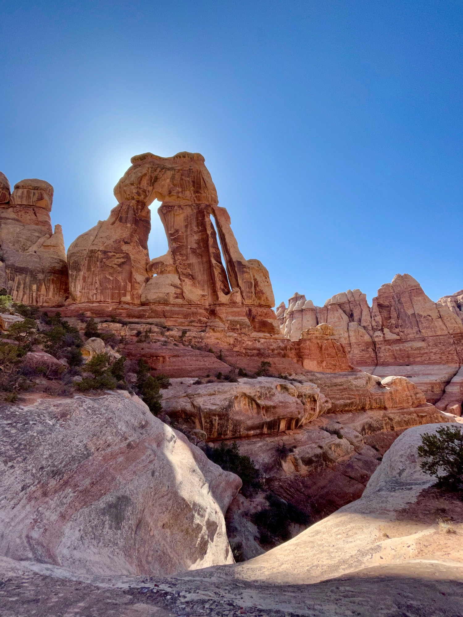 Druid Arch. The arch itself is 150 feet tall and the peak is 400 feet above the canyon floor.