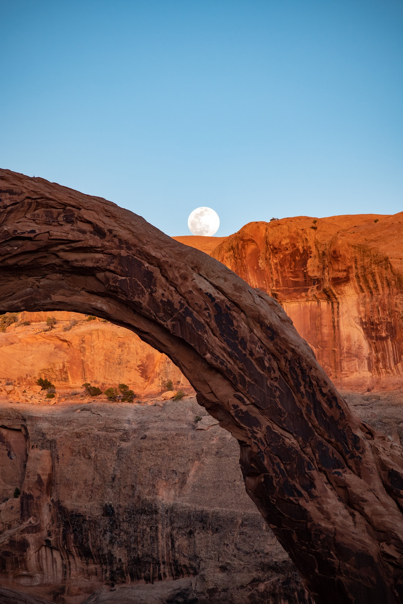Full moon rising over Corona Arch, perfect timing.